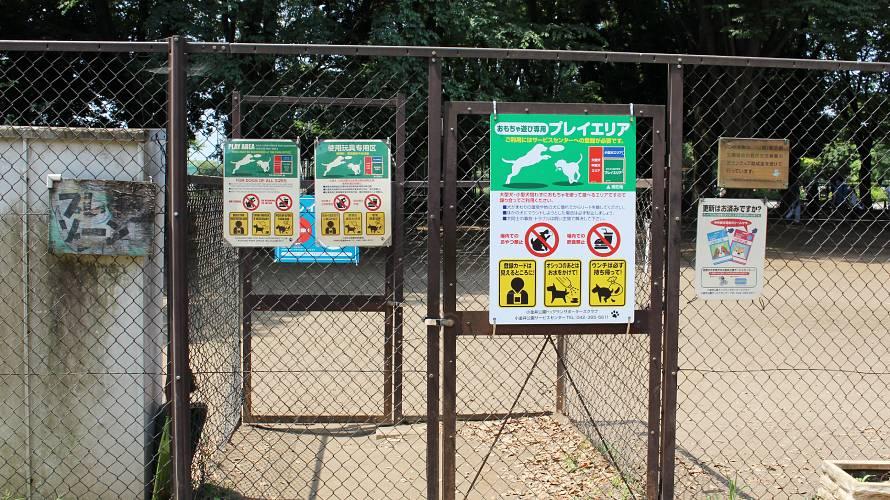 小金井公園 ドッグラン プレイゾーン