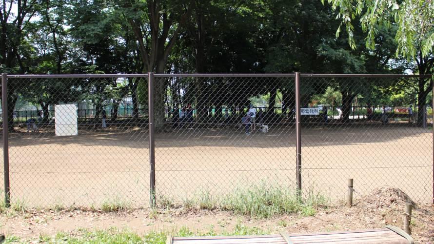 小金井公園 ドッグラン