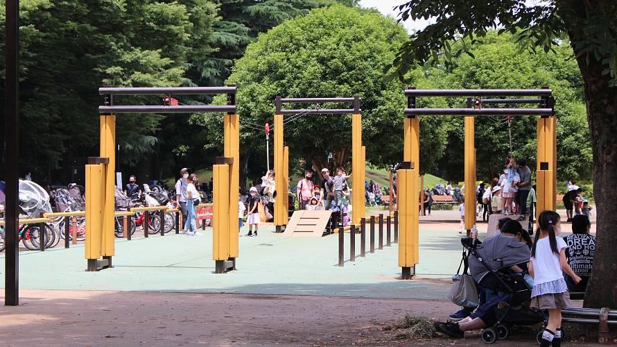 小金井公園 ターザンロープ