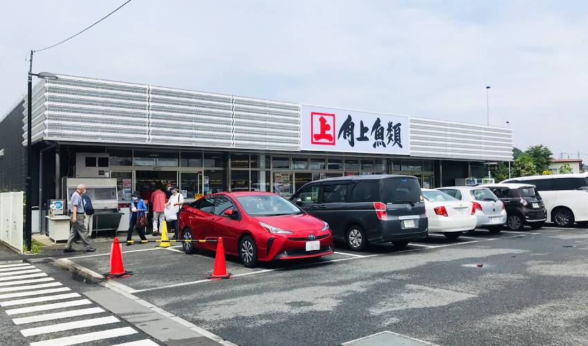 大人気!巨大魚量販店『角上魚類』に初訪問!